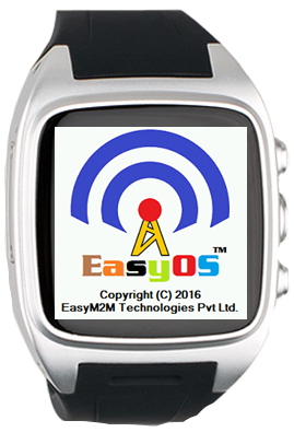 Solution Easym2m Technologies Private Ltd India